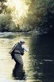 Pescador da mosca que usa a haste flyfishing Imagem de Stock Royalty Free
