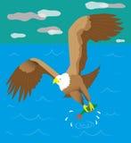 Pescador de Eagle Foto de archivo