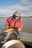 Pescador de la anguila Imagen de archivo libre de regalías