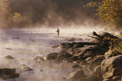 Pescador de la mosca Imagen de archivo