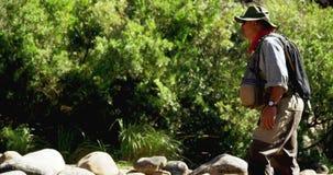 Pescador de la mosca que se coloca en roca cerca de la orilla almacen de video