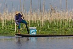 pescador del Pierna-rowing en el lago Inle, Myanmar Fotos de archivo libres de regalías