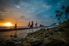 Pescador do pernas de pau em Koggala, Sri Lanka Fotos de Stock Royalty Free