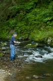 Pescador em um córrego pequeno da truta. Foto de Stock Royalty Free