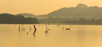 Pescador en el lago del kandalama, dambulla, Sri Lanka foto de archivo libre de regalías