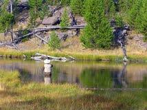 Pescador en el parque nacional de Yellowstone Imagen de archivo libre de regalías