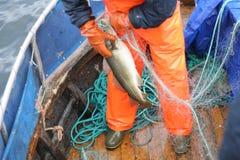 Pescador en el trabajo Imagenes de archivo