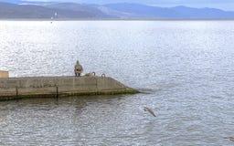 Pescador en la playa en el otoño en la Crimea Imágenes de archivo libres de regalías