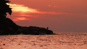 Pescador en la puesta del sol roja almacen de video