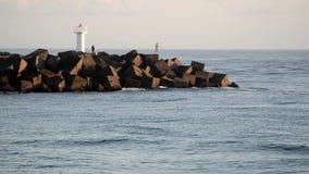 Pescador en la vía marítima en Gold Coast Queensland Australia almacen de video