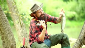 Pescador feliz que pesca en el río que sostiene las cañas de pescar Hombre del pescador de la mosca en el río Trucha Sostener la  almacen de metraje de vídeo