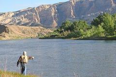 Pescador Fly Fishing en el Green River Fotografía de archivo libre de regalías