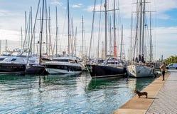 Pescador no maritimo de Paseo - Palma de Mallorca, Balearic Island, Espanha fotos de stock royalty free