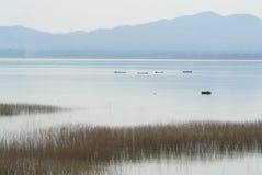 Pescador no reservatório Imagens de Stock Royalty Free