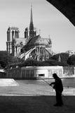 Pescador no rio Seine e Notre Dame de Paris, Paris, França Imagem de Stock Royalty Free