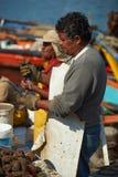 Pescador no trabalho Foto de Stock Royalty Free