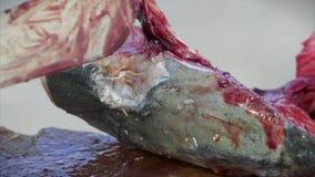 Pescador que corta acima peixes no porto vídeos de arquivo