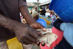 Pescador que cuenta el dinero fotografía de archivo libre de regalías
