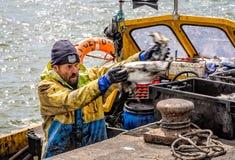 Pescador que descarga la captura imagen de archivo