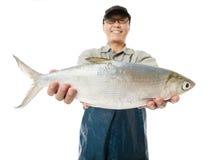 pescador que muestra los pescados grandes del chabalote aislados en blanco fotos de archivo