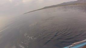Pescador que pesca Dorado almacen de video