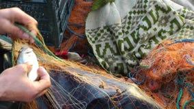 Pescador Repairs Fishnets metrajes