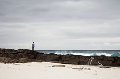 Pescador solitário Imagem de Stock Royalty Free
