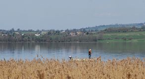 Pescador solitário no lago Fotografia de Stock Royalty Free