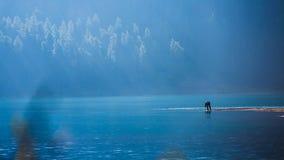Pescador solitário que prepara sua vara de pesca Foto de Stock