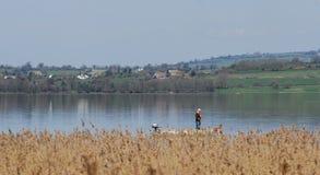 Pescador solitario en el lago Fotografía de archivo libre de regalías
