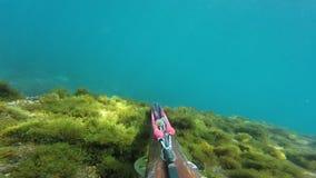 Pescador subacuático de la lanza con el arma que explora las aguas Spearfishing en el mar almacen de metraje de vídeo