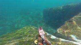 Pescador subacu?tico de la lanza con el arma que explora las aguas Spearfishing en el mar/el ocea almacen de metraje de vídeo