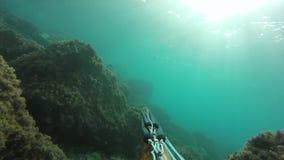 Pescador subacu?tico de la lanza con el arma que explora las aguas Spearfishing en el mar metrajes