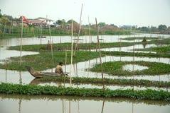 Pescador tradicional tailandês no rio Imagem de Stock