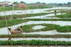 Pescador tradicional tailandês no rio Fotografia de Stock