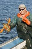 Pescador y una langosta viva Fotos de archivo libres de regalías