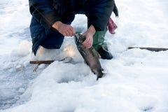 Pescadores. Fotografía de archivo libre de regalías