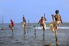 Pescadores del palillo en Unawatuna, Sri Lanka Imagen de archivo libre de regalías