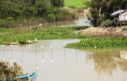 Pescadores em Ásia fotografia de stock
