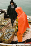 Pescadores en el barco del barco rastreador Imagenes de archivo