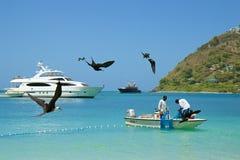 Pescadores en Tortola, del Caribe foto de archivo