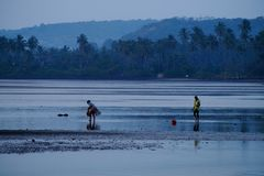 Pescadores na praia Imagem de Stock Royalty Free