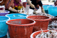 Pescadores que clasifican pescados Imagen de archivo libre de regalías