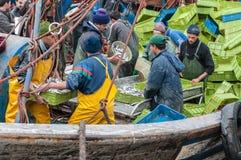 Pescadores que descargan la captura Fotografía de archivo libre de regalías