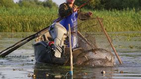 Pescadores que verificam redes no alvorecer no delta de Danúbio vídeos de arquivo