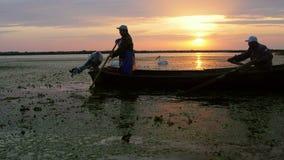 Pescadores que verificam redes no alvorecer no delta de Danúbio filme