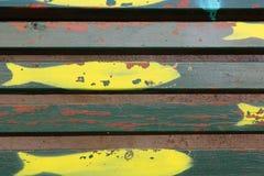 Pescados amarillos Imágenes de archivo libres de regalías