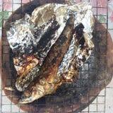 Pescados asados del saba Fotografía de archivo