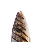 Pescados asados a la parilla Fotografía de archivo libre de regalías