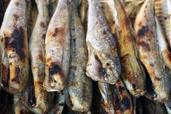 Pescados asados a la parilla con la sal Fotografía de archivo